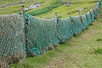 Heu trocknen in alten Fischernetzen, Heu machen, Heu, Färöer, Färöer-Inseln, Färöer Inseln, hay, to make hay, to hay, Faroe, Faeroe Islands, Les Îles Féroé