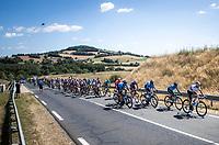 Peloton including World Champion Alejandro Valverde (ESP/Movistar)<br /> <br /> Stage 10: Saint-Flour to Albi (217.5km)<br /> 106th Tour de France 2019 (2.UWT)<br /> <br /> ©kramon