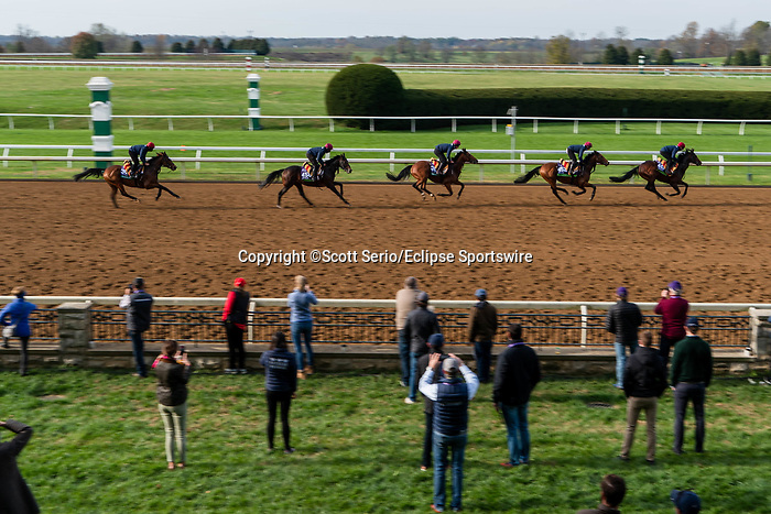 November 5, 2020: A group of Aidan O'Brien trainees participate in morning workouts at Keeneland Racetrack in Lexington, Kentucky on November 5, 2020. Scott Serio/Eclipse Sportswire/Breeders Cup/CSM