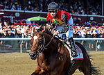 SARATOGA SPRINGS, NY - AUGUST 27: A.P. Indian #11, ridden by Joe Bravo, wins the Forego Stakes on Travers Stakes Day at Saratoga Race Course on August 27, 2016 in Saratoga Springs, New York. (Photo by Bob Mayberger/Eclipse Sportswire/Getty Images)