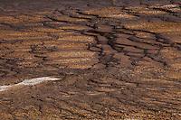 Midway Geyser Basin I