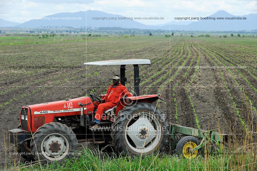 ANGOLA Kwanza Sul, Grossfarm fuer Anbau von Mais / ANGOLA Kwanza Sul , a large farm for production of maize