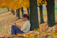 Young girl, 12-14, texts on her cell phone while leaning against a maple tree with its leaves turned golden in the fall.