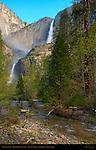 Yosemite Falls from John Muir Cabin Site at Sunrise in Spring, Yosemite National Park