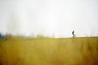 random cyclist 'en route' over the race parcours<br /> <br /> 57th E3 Harelbeke 2014