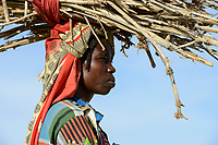 CHAD, Goz Beida, refugee camp Djabal for refugees from Darfur, Sudan, woman carry firewood / TSCHAD, Goz Beida, Fluechtlingslager Djabal fuer Fluechtlinge aus Darfur, Sudan