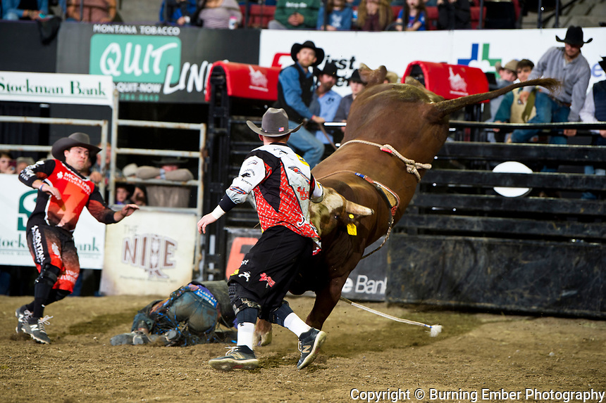 Devon Mitchell, D&H Callt Co's bull Stone Cold Stunn in the Bull Riding Event at the NILE PRCA 3rd perf Event. October 19th, 2018.  Photo by Josh Homer/Burning Ember Photography.  Photo credit must be given on all uses.