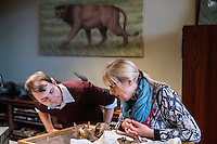 Belgium. Brussels. London. 17th November 2015<br /> (Name needed) and Dr. Mietje Germonpré  (right) inspect the skull of an ancient dog before cutting a piece for DNA testing.<br /> Andrew Testa for the New York Times