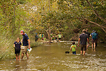 families working together to find insects in the creek