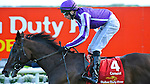 Camelot (no. 4), ridden by Joseph O'Brien and trained by Aidan O'Brien, wins the 147th running of the group 1 Irish Derby for three year olds on June 30, 2012 at the Curragh Racecourse in Newbridge, Kildare, Ireland.  (Bob Mayberger/Eclipse Sportswire)