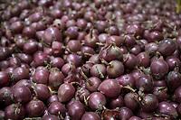 CROATIA, Belica, potato farming at Dodlek Agro / KROATIEN, Belica, Kartoffelanbau bei Dodlek Agro, baut und vemarktet auch Zwiebeln