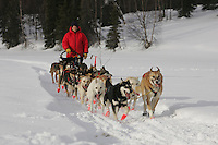 John Barron on the trail nearing the Finger Lake checkpoint.  Monday, March 7.  2005 Iditarod Sled Dog Race