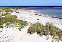 Strand von Snogebæk auf der Insel Bornholm, Dänemark, Europa<br /> beach at Snogebaek, Isle of Bornholm Denmark