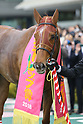 Horse Racing: Tulip Sho at Hanshin Racecourse