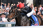 """April 19, 2014:  Mr Speaker and jockey Jose Lezcano win the G3 Coolmore Lexington Stakes at Keeneland for owner Phipps Stable and trainer Claude R. """"Shug"""" McGaughey.Jessica Morgan/ESW/CSM"""