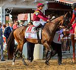 SARATOGA SPRINGS, NY - AUGUST 25: Catholic Boy  #11, ridden by jockey Javier Castellano, wins the Travers Stakes on Travers Stakes Day at Saratoga Race Course on August 25, 2018 in Saratoga Springs, New York. (Photo by Sue Kawczynski/Eclipse Sportswire/Getty Images)