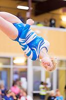 2014 South Texas State TNT Gymnastics
