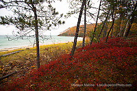 Pictured Rocks Miner's Beach Autumn