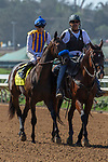 DEL MAR, CA  SEPTEMBER 1:#4 Mother Mother, ridden by Joseph Talamo, in the post parade of the Del Mar Debutante (Grade 1) on September 1, 2018, at Del Mar Thoroughbred Club in Del Mar, CA.(Photo by Casey Phillips/Eclipse Sportswire/Getty ImagesGetty Images
