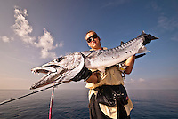 November 2008, Maldives islands. Fisherman in his 40s holding a very large Barracuda caught on a jig in the waters of Indian Ocean. Horizontal