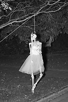 Life-sized skeletons are dressed up for Halloween decorations along Hillcrest Road in Belmont, Massachusetts, USA, on Mon., Oct. 30, 2017. A resident said the neighborhood has been doing similar coordinated decorations along the road for the previous 3 or 4 years. In this image, the skeleton is dressed as a dancer or ballerina suspended from a tree.
