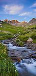 San Juan Mountains, CO<br /> Grizzly creek flows through wildflower meadows beneath Handies Peak in American Basin