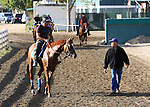 29 March 2010: Trainer Humberto Ascanio walks alongside three year old colt Causeitherz by Giant's Causeway; the first foal out of the former Bobby Frankel trainee Megahertz at Hollywood Park, Inglewood, CA