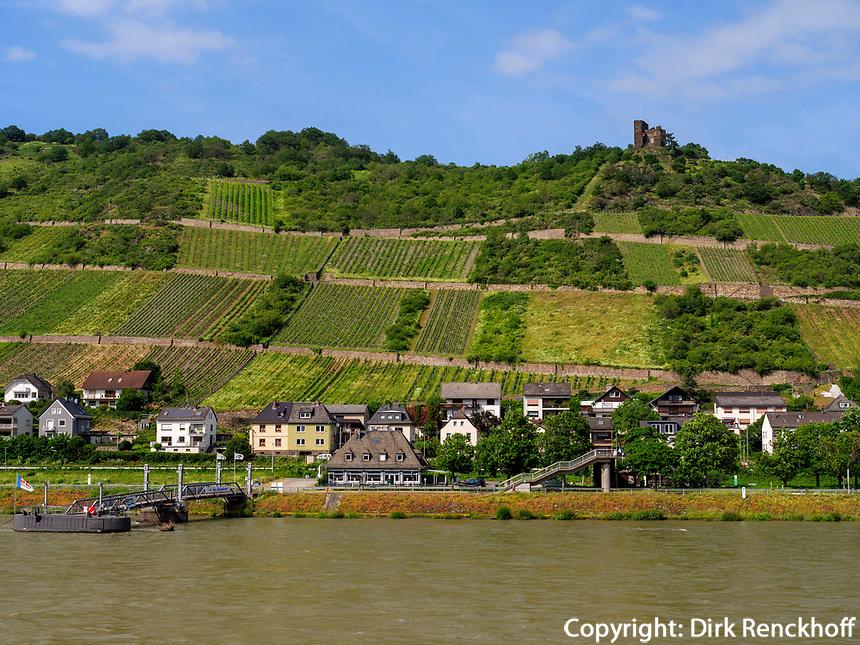 Rhein bei Lorch, Hessen, Deutschland, Europa<br /> Rhine near Lorch, Hesse, Germany, Europe