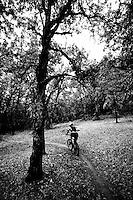 Mountain biking in the Gifford Pinchot National Forest above Stevenson WA.