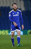 Aron Gunnarsson of Cardiff City during the Sky Bet Championship match between Cardiff City and Preston North End at Cardiff City Stadium, Wales, UK. Tuesday 31 January 2017