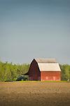 Red barn, Arenac County, Michigan.