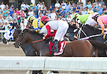 Bradester (no. 1), ridden by Corey Lanerie and trained by Eddie Kenneally, wins the grade 2 Monmouth Cup Stakes for three year olds and upward on August 2, 2015 at Monmouth Park in Oceanport, New Jersey. (Bob Mayberger/Eclipse Sportswire)