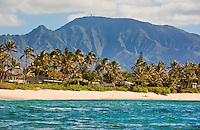View of Mt. Kaala and a Waialua beach