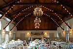 Alicia and Matt's wedding reception.