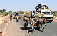 NIGER, village Namaro, rural transport, people go to the market by donkey cart and mini bus / Dorf Namaro, Transport zum Markt