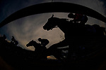 MAY 18: War of Will with Tyler Gaffalione race in the back of the pack before going on to win the 144th running of the Preakness Stakes at Pimlico Racecourse in Baltimore, Maryland on May 18, 2019. Evers/Eclipse Sportswire/CSM