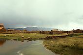Lake Titicaca, Bolivia. Small adobe settlement on Lake Titicaca with sheep.