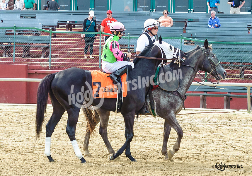 Silent Citizen before winning The Stanton Stakes at Delaware Park on 6/11/18