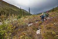 Backpackers hike along the Arrigetch creek drainage into the Arrigetch Peaks, Gates of the Arctic National park, Alaska.