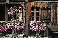 Europe/France/Rhône-Alpes/74/Haute-Savoie/Env Le Grand-Bornand: Ferme d'altitude de la vallée du Bouchet vers le Col des Annes
