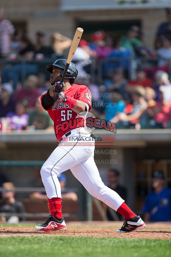 Hendrik Clementina (56) of the Billings Mustangs follows through on his swing against the Missoula Osprey at Dehler Park on August 20, 2017 in Billings, Montana.  The Osprey defeated the Mustangs 6-4.  (Brian Westerholt/Four Seam Images)