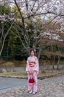 Kyoto_Cherry Blossoms