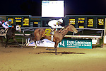 January 16, 2016:Mo Tom with Corey J. Lanerie up in  the Lecomte Stakes in New Orleans Louisiana. Steve Dalmado/ESW/CSM