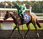 ARLINGTON HEIGHTS, IL - AUGUST 11: #3, Sistercharlie (IRE), Jockey John Velazquez up for Trainer Chad Brown, claims her place in the Breeders Cup Filly Mare Turf after winning the $600,000 Grade I Beverly D Stakes at Arlington Park on August 11, 2018 in Arlington Heights, Illinois. (Photo by Carson Dennis/Eclipse Sportswire/Getty Images)