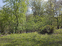 PG_LOCATION_60272