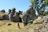 Raukgebiet Grausne Norra Raukcområde bei Lickershamn auf der Insel Gotland, Schweden, Europa<br /> Ruak(cliff) area Grausne NoraRaukomrade near Lickershamn, Isle of Gotland, Sweden