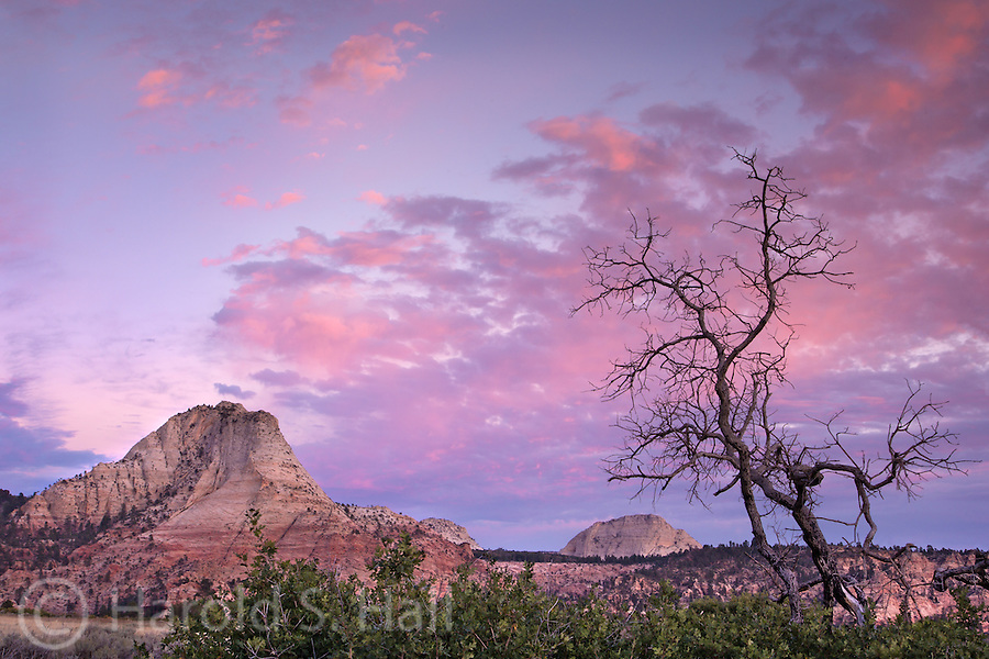 The sun is setting on the Kalob Terrance section of Zion National Park, Utah.