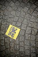 Lion Flag<br /> <br /> Ronde van Vlaanderen 2014