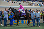 DEL MAR, CA  JULY 21:  #10 War Heroine, ridden by Tyler Baze, in the winners circle after winning the San Clemente Handicap (Grade ll) on July 21, 2018, at Del Mar Thoroughbred Club in Del Mar, CA(Photo by Casey Phillips/Eclipse Sportswire/Getty Images)