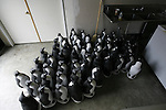 A group of plastic penguins stored in a kitchen at Stonehedge in Sonoma California.